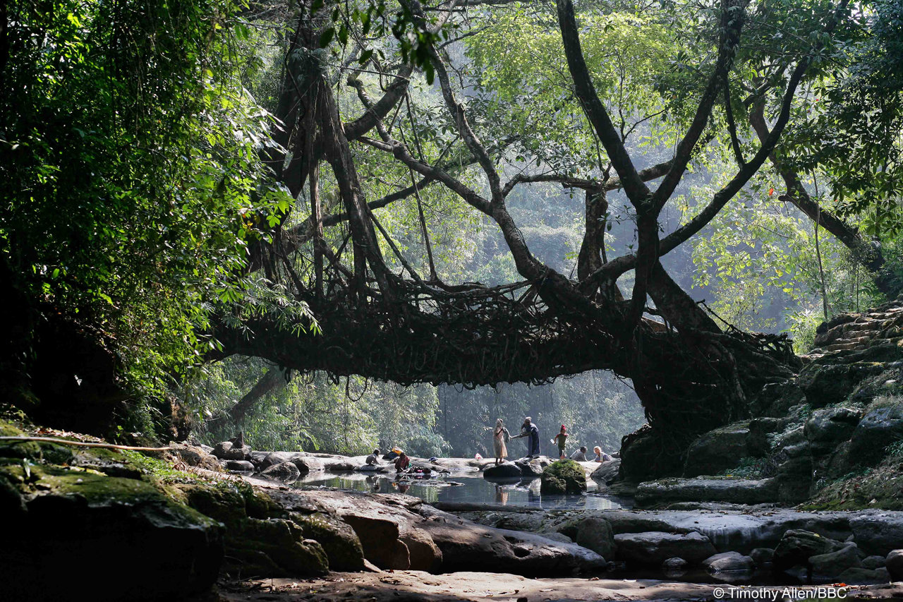 Rivers / Meghalaya, India