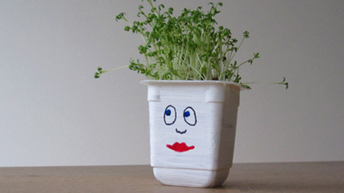 Image of cress heads make