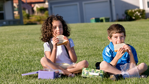 Girl and boy eating sandwiches on grass