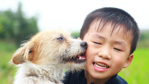 Child with dog near face
