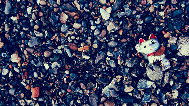 Image of cat toy on stony beach