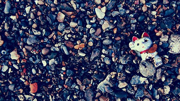 Image of cat toy on stony beach